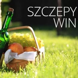 Szczepy win / Skarbnica win