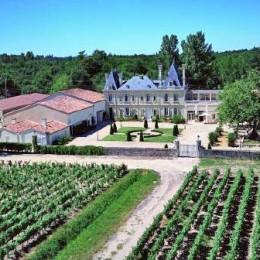 Region Bordeaux – idealne miejsce dla każdego wielbiciela smaku wina